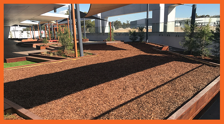 Commercial bark pit
