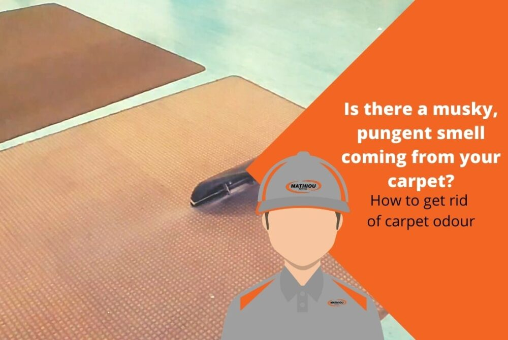 How to get rid of carpet odour