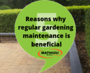 Reasons why regular gardening maintenance is beneficial
