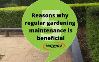 5 reasons why regular gardening maintenance is beneficial