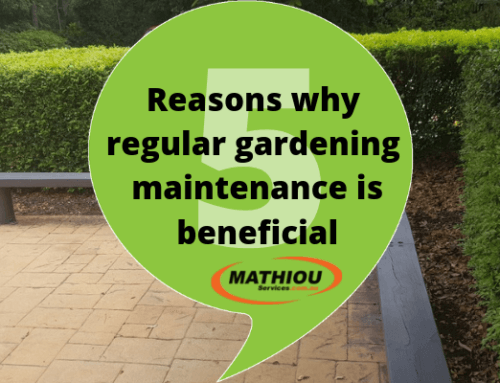 5 reasons why regular gardening maintenance is beneficial