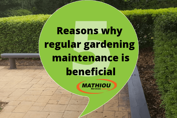 5 reasons why regular gardening maintenance is beneficial Community Gardening & Landscaping Services  regular gardening gardening maintenance gardening