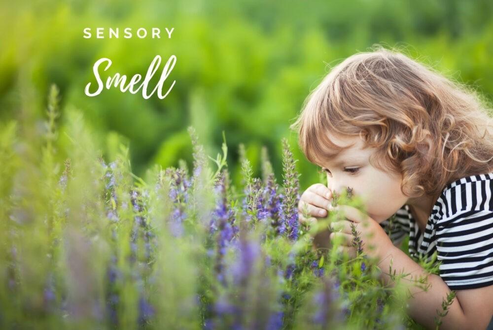 Developing Sensory Smell through play (1)