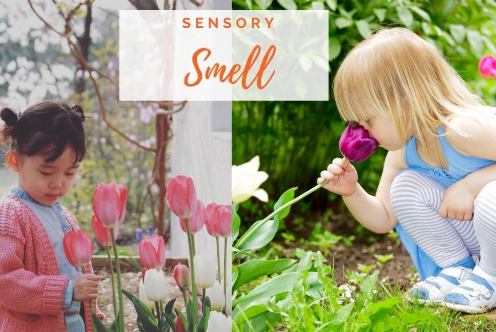 Developing Sensory Smell through play (2)