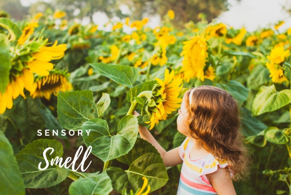 Developing Sensory Smell through play (3)