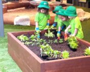 Gardening - best Soil