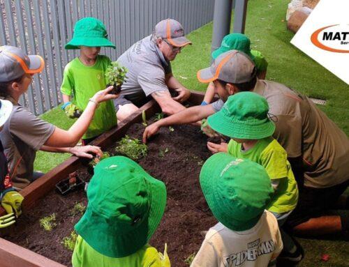 Vegetable garden beds at Edge Early Learning Kelvin grove